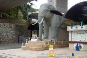 多摩動物公園へ行こう