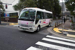 さくら巡りバスに乗ろう!