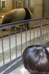上野動物園へ行こう!①