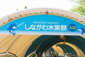 しながわ水族館へ行こう!①