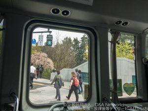 桜めぐりバスに乗ろう!