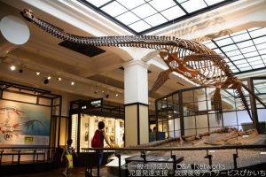180901国立科学博物館へ行こう!